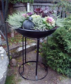 I think I'll do this with and old barbeque that is rusting a bit but would still hold plants. I will tuck it into some side bushes.
