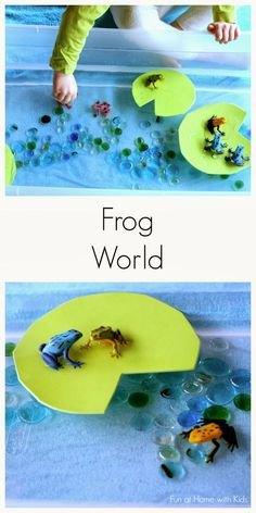"Simple Small Worlds: Frog World from Fun at Home with Kids. Lots more great ""small world"" play ideas here! Sensory Boxes, Sensory Table, Sensory Activities, Preschool Activities, Sensory Play, Indoor Activities, Summer Activities, Family Activities, Preschool Centers"