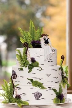The ferns are a lovely touch. Baker: Piece of Cake. Photo: Kate Baker Photography See more cakes at: http://realmaineweddings.com/Planning-Tools/Maine-Cakes.aspx