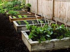 How to Build and Install Raised Garden Beds