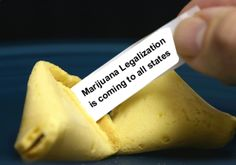 NORML: Partnership For A Drug-free America Concedes Marijuana Legalization Is Inevitable