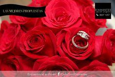 Porque un ramo de flores puede ir muy bien acompañado. Por ejemplo de una propuesta con diamantes. ¡Nuestra recomendación para el anillo está en nuestro Facebook! #LasMejoresPropuestas #CarloConti #GaleríaJoyera #Gdl