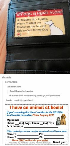 Animal owner's must-have
