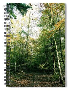 """This 6"""" x 8"""" spiral notebook features the artwork """"German Woods Part 2 """" by Britta Zehm on the cover and includes 120 lined pages for your notes and greatest thoughts."""