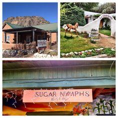 On the road to Taos, Vivac Winery, La Chiripada Winery and Sugar Nymphs Cafe
