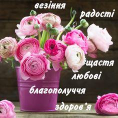 Привітання з днем народження - 240 привітань імениннику 5 сторінка Birthday Images, Birthday Cards, Happy Birthday Greetings, 8th Of March, Happy Day, Pink And Green, Rose, Party, Flowers
