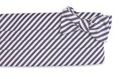 High Cotton | True Navy Stripe Cummerbund Set @Cody Warren