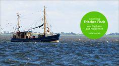 AMPELMANN Restaurant mit frischem Fisch von Fischern aus Hiddensee