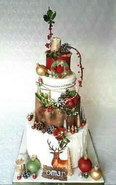 A Christmas birthday cake by Fées Maison (AHMADI)