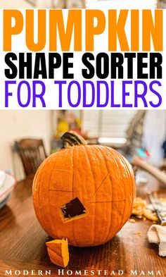Pumpkin Shape Sorter for Toddlers | Modern Homestead Mama Preschool Learning, Toddler Activities, Activities For Kids, Sensory Boxes, Sensory Play, E Craft, Toddler School, Halloween Math, How To Start Homeschooling