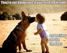 Kids and dogs - love them, treat them right, and teach them to play well with others.