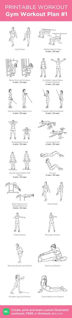 nice Gym Workout Plan #1