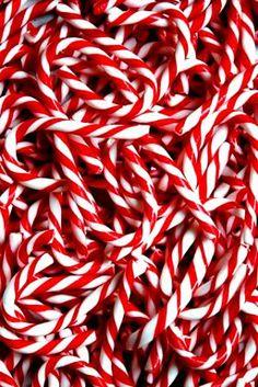#Christmas candy canes Toni Kami Joyeux Noël photography