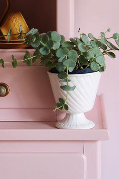 MY ATTIC SHOP / vintage flowerpot / plants / pink / roze    Photography: Marij Hessel  www.entermyattic.com