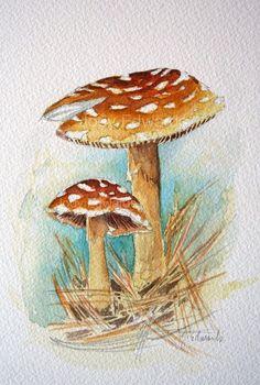Mushrooms painting - Original Watercolor Painting