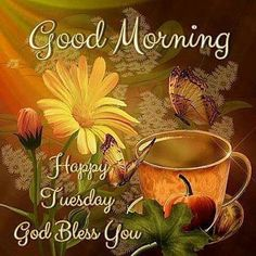 Good Morning, Happy Tuesday, God Bless You Tuesday Morning Wishes, Tuesday Quotes Good Morning, Tuesday Greetings, Happy Tuesday Quotes, Good Morning Happy Sunday, Morning Greetings Quotes, Good Morning Good Night, Good Morning Wishes, Morning Blessings