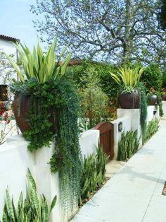 clôture de jardin décorée de succulentes et agaves en pots d'acier Corten