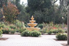 Harry P. Leu Gardens  Orlando, FL