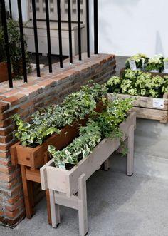 Best Indoor Plants, Outdoor Plants, Planter Box Designs, Diy Plant Stand, House Plants Decor, Diy Garden Decor, Diy Home Decor, Wooden Garden, Woodworking Projects Diy