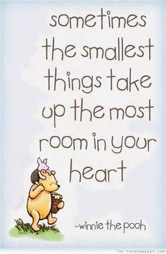 "I decorated my baby's room in Pooh. I love Pooh. So sad when she came to me & said she'd ""outgrown it."" Looking forward to when she realizes that Pooh is awesome again. Cute Quotes, Great Quotes, Inspirational Quotes, Baby Sayings And Quotes, Weird Quotes, Genius Quotes, Winnie The Pooh Quotes, A A Milne Quotes, Piglet Quotes"
