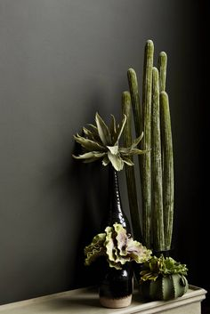 Mohave faux cactus: eclectic by abigail ahern, eclectic Faux Plants, Cactus Plants, Cacti, Indoor Garden, Indoor Plants, Dark Bohemian, Abigail Ahern, Decoration Plante, Urban Nature