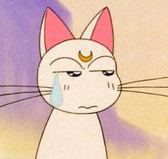 Artemis #Sailormoon