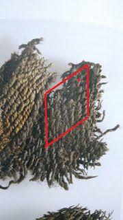 Archäotechnik - textile Fläche: Geschärt - Islandprojekt Teil 5 Tablet Weaving, Braids With Weave, Viking Age, Anglo Saxon, Textile Patterns, Iceland, Vikings, Roman, Medieval