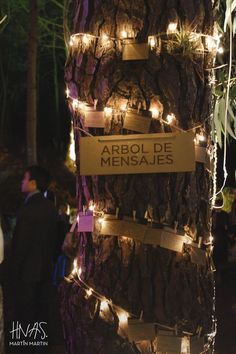 casamiento, boda, bosque, pinamar, playa, pallet, carpa beduina, guirnaldas de luces kermesse, lavanda, piña, velas, arpillera, luces wedding, forest, wood, beach, tent, kermesse light, lavender, pineapple, candles, burlap, light centro de mesa, decoración, arbol de mensajes, post tree: