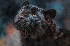 Black Panther III Canvas Print by David Stribbling Panther Leopard, Panther Cat, Black Panther Art, Big Cats Art, Cat Art, Animal Paintings, Animal Drawings, Cheetahs, Canvas Art Prints