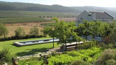 All the info about Wine tasting at South Hill Wine Estate in Elgin, South Africa South African Wine, South Hill, Wineries, Wine Tasting, Wine Cellars