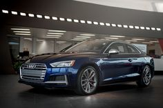 2018 Audi Coupe in Navarra Blue Audi Cars, Audi Quattro, A5, Characters, Luxury, Autos, Cutaway, Car