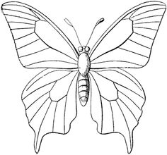Butterfly Outline Coloring Page Butterfly Coloring Pages Free Coloring Pages. Butterfly Outline Coloring Page Coloring Page Outline Of Cartoon Little . Tree Coloring Page, Butterfly Coloring Page, Animal Coloring Pages, Colouring Pages, Printable Coloring Pages, Coloring Books, Kids Coloring, Free Coloring, Butterfly Outline