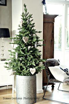 Sommerjenten`s interiørhule: Julen sniker seg inn