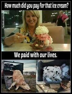Think about that next time...There are A LOT of vegan ice creams out there. No need to end a life just for a scoop of dairy ice cream.