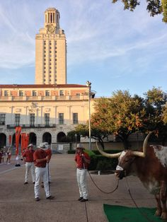 Because the mascot 'Bevo' itself represents the sheer will and strength to succeed.