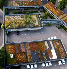 https://www.google.com/search?tbm=isch&source=hp&biw=1920&bih=941&ei=0t8rW9j_BZCTsAfVnri4Dg&q=Augustenborg+Botanical+Roof+Garden+on+top+of+the+Scandinavian+Green+Roof+Institute+in+Sweden.&oq=Augustenborg+Botanical+Roof+Garden+on+top+of+the+Scandinavian+Green+Roof+Institute+in+Sweden.&gs_l=img.3...1435.1435.0.2369.2.2.0.0.0.0.82.82.1.1.0....0...1ac.1.64.img..1.0.0.0...0.AOC0z7nTFE0#imgrc=_rGWAxEqVSQtvM: