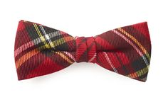 Bow tie Scottish model Elio by Bowking