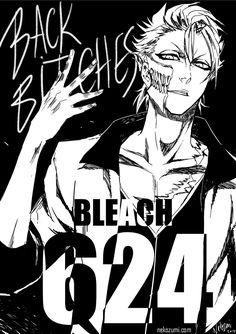 BLEACH - KING IS BACK (SPOILER 624) by Nekozumi.deviantart.com on @DeviantArt