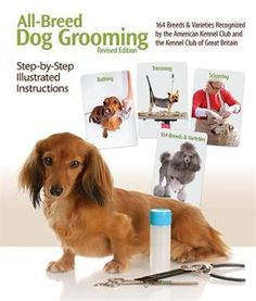 An essential resource for professional dog groomers for nearly 25 years, All-Breed Dog Grooming is a comprehensive guide that provides step-by-step Dog Grooming Tips, Dog Grooming Supplies, Poodle Grooming, Dog Grooming Business, Grooming Shop, Pet Supplies, Pet Tips, Rare Dogs, Rare Dog Breeds