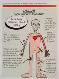 Calcium: How much is enough?
