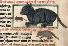 Cats in medieval Europe mostly had a bad reputation - they were associated with witches and heretics, and it was believed that the devil could transform himself into a black cat. Medieval Life, Medieval Art, Medieval Books, Medieval Manuscript, Illuminated Manuscript, Illuminated Letters, Bubonic Plague, Animal Gato, Old Best Friends