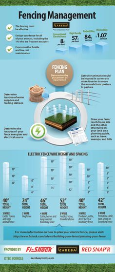 Fencing Management Infographic