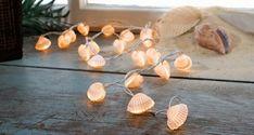Decoração sem custos - conchas e búzios com luzes de natal
