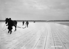 Ice Harvest