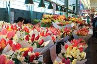 Although people prefer to buy flowers from larger enterprises due to a brand name, and guarantee of quality, there is a need to support local businesses, and especially florists. In terms of flower delivery Singapore is home to hundreds of small and local flower shops. For any local florist Singapore is home, and a flower