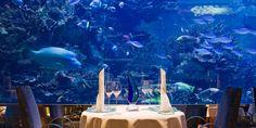 Best Restaurants Around the World - Bucket List Restaurants Around the World
