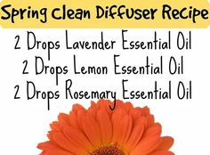Spring Clean Diffuser recipe, Lavender, Lemon and Rosemary Essential Oil. www.hayleyhobson.com