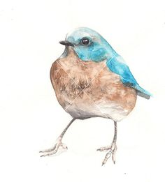 Blue Birdie / Watercolor illustration print by BarbaraSzepesiSzucs, $25.00
