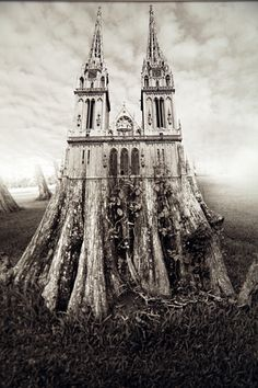 Jerry Uelsmann, Trees Cathedral