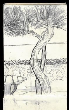 Tamerice Elba island 1995 - Sketcher Riccardo Giunti sketchbook summer 2002. #riccardogiunti